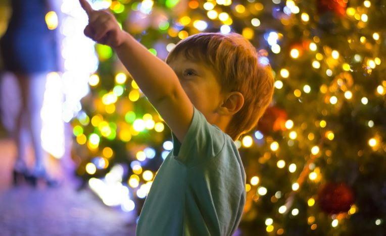 Elegir el árbol de navidad perfecto es fácil si sabes como.